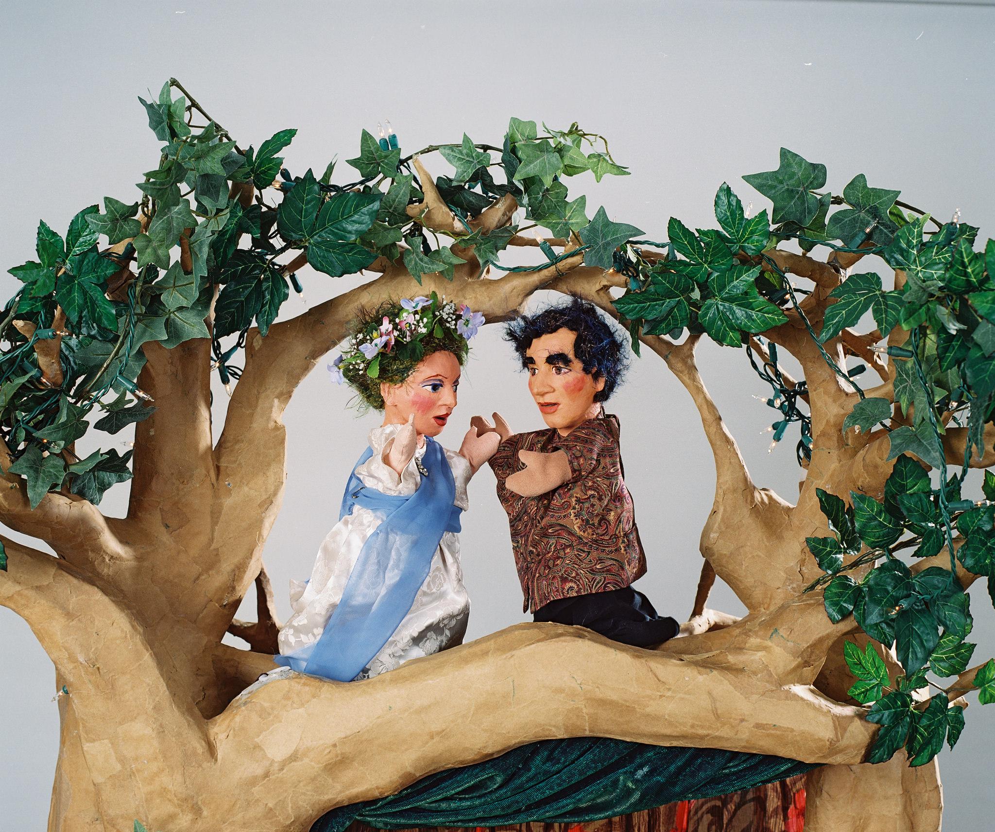 A Woodland Cinderella