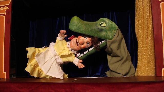judy_alligator.jpg