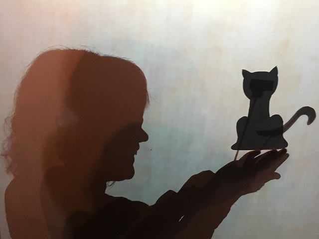 Cat exploring shadow puppetry in a staff workshop.