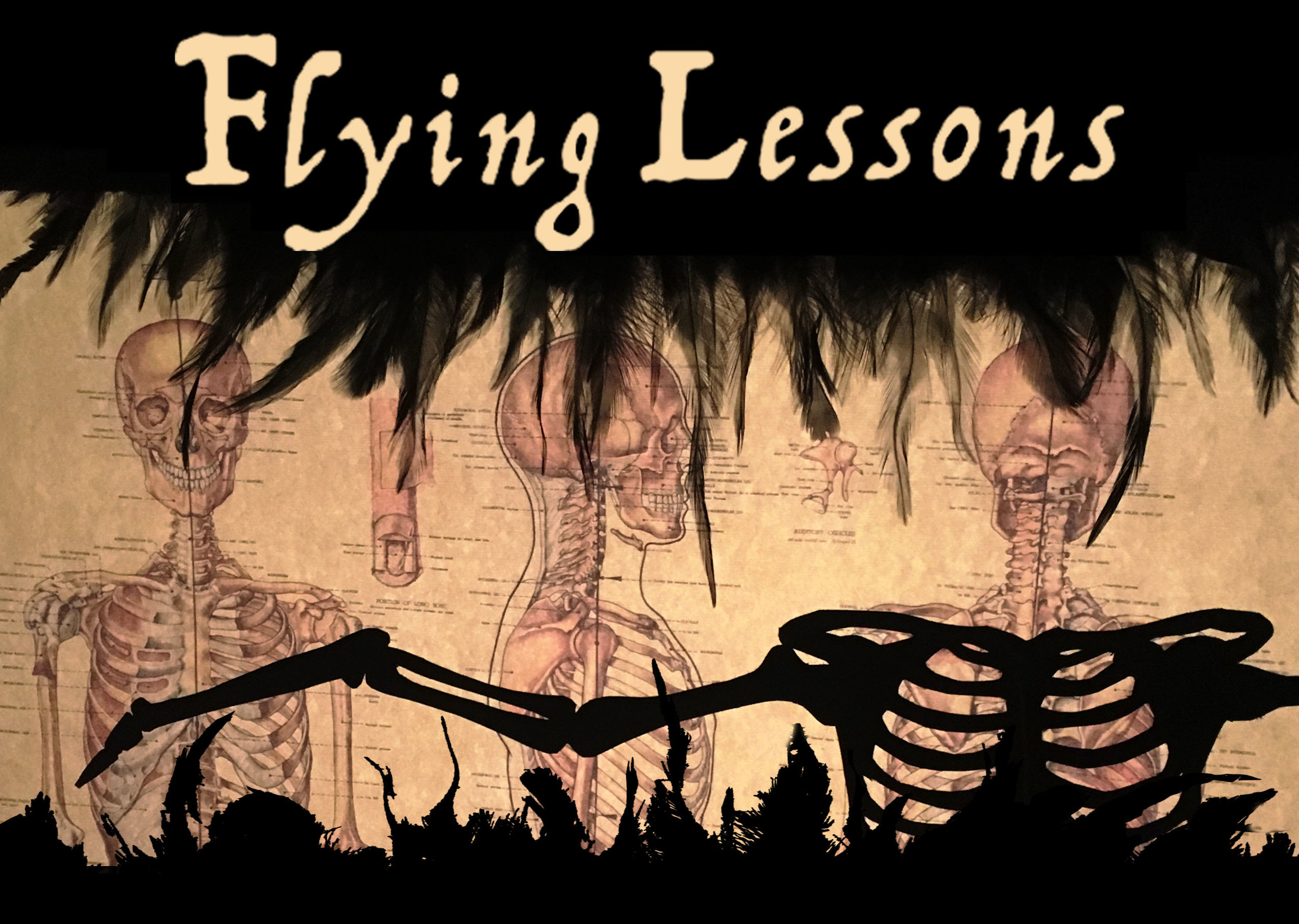 Flying Lessons Header