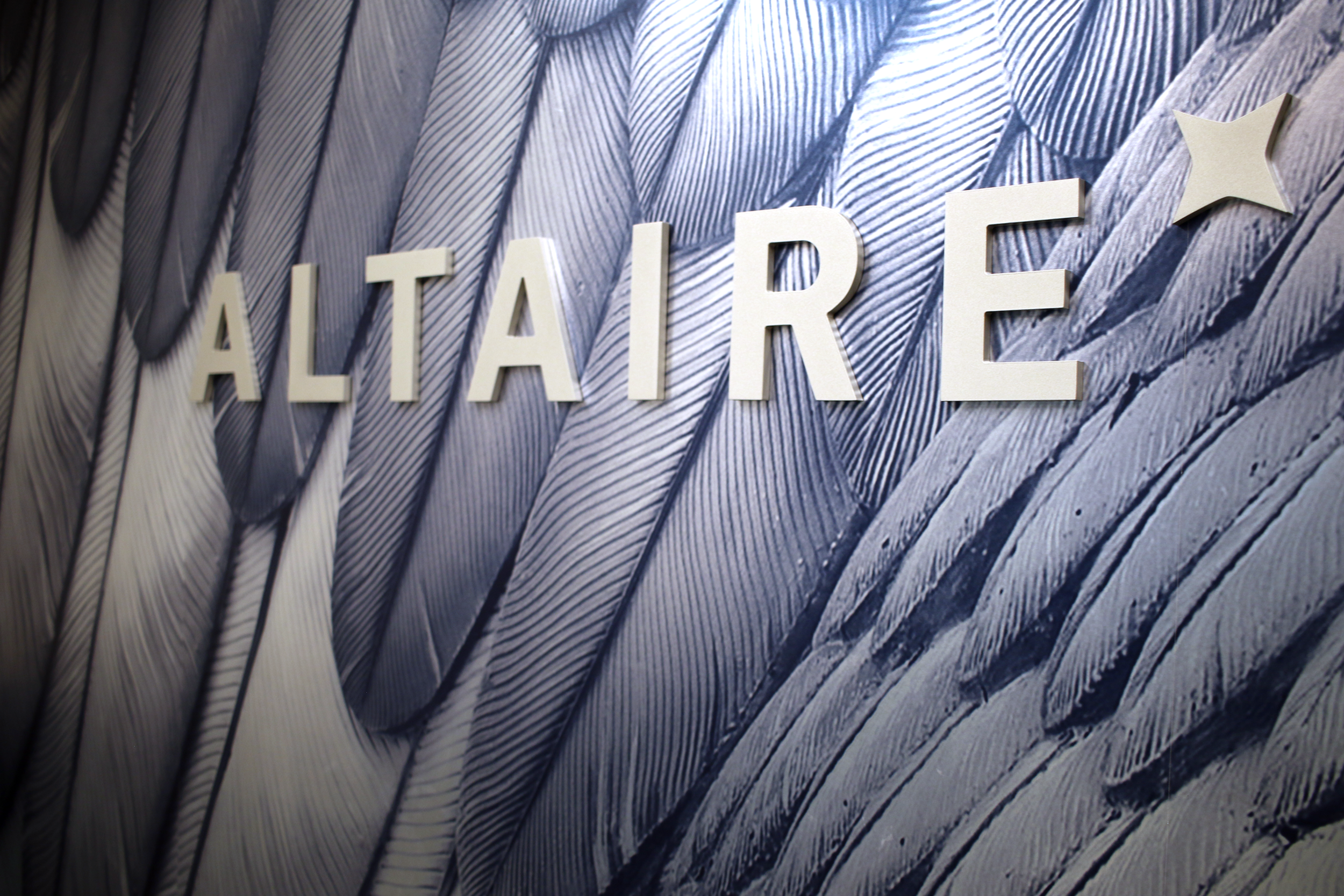 Feather Wall 071A1324.png