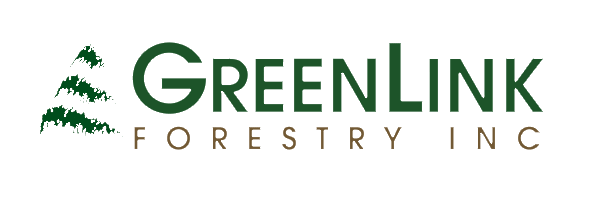 green-link-forestry-w2.png