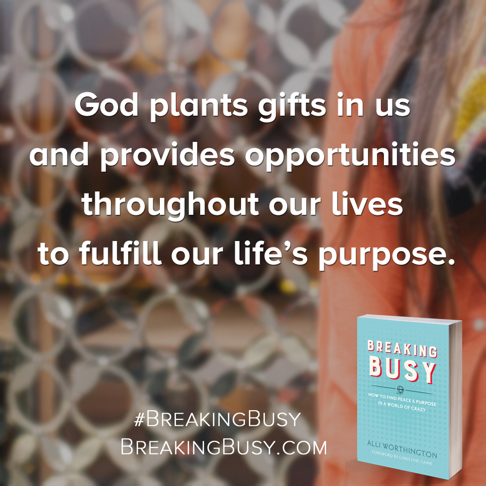 Breaking Busy Book.God plants gifts in us  and provides opportunities  throughout our lives  to fulfill our life's purpose.. by Alli Worthington.jpg