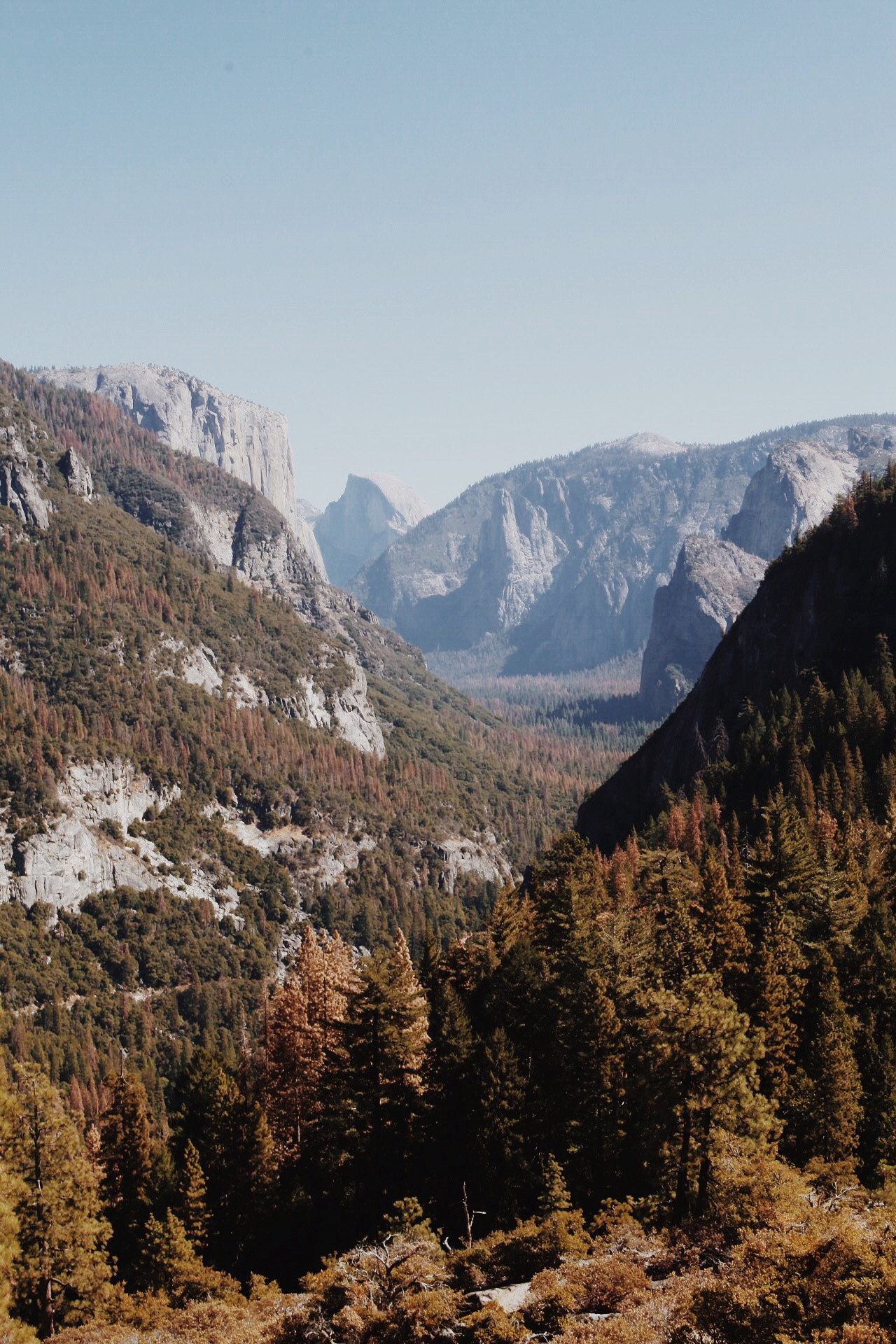 VIEW YOSEMITE COLLECTION