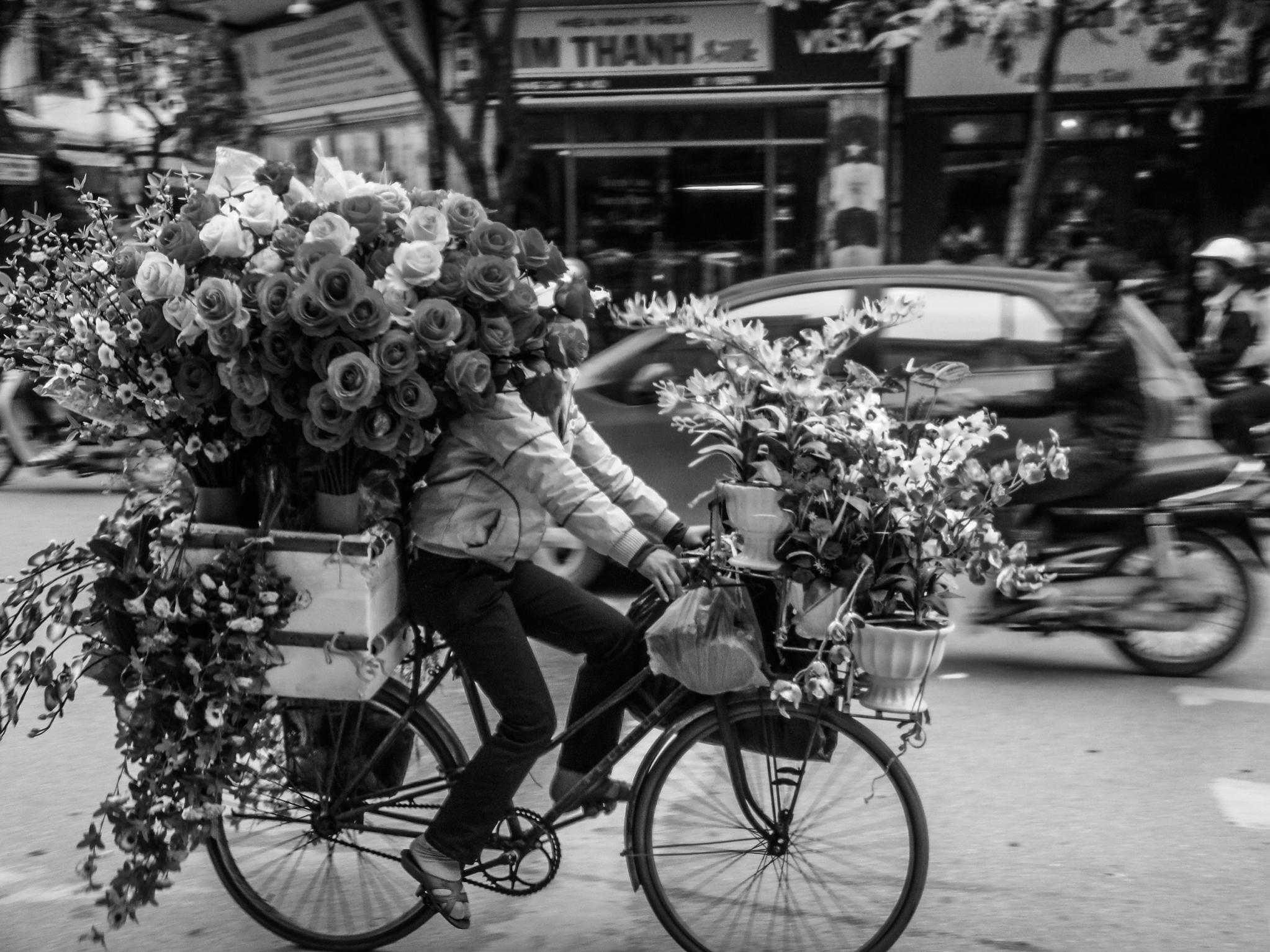 Bike (2).jpg