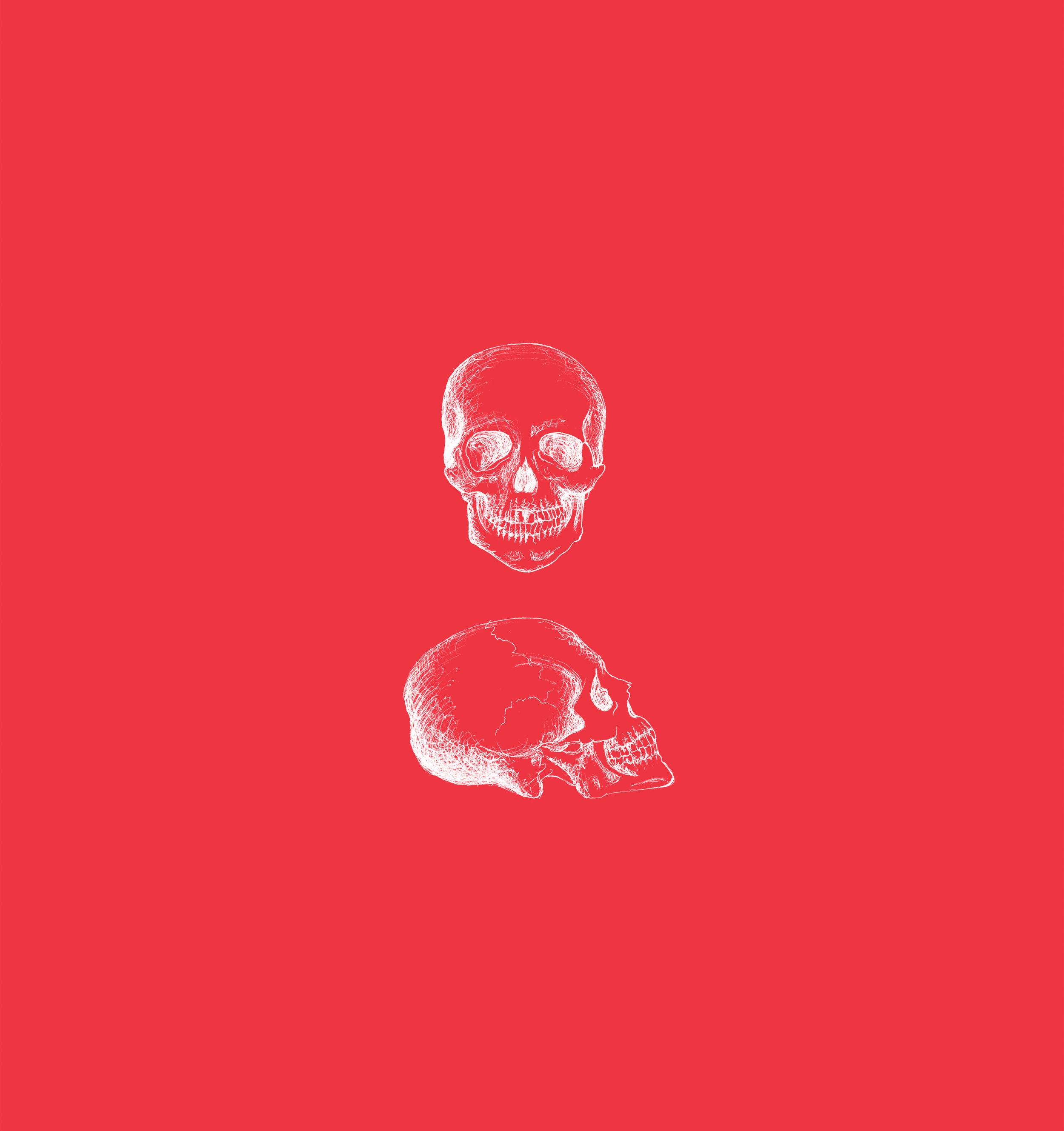 pf_tattoo_skullpink.png