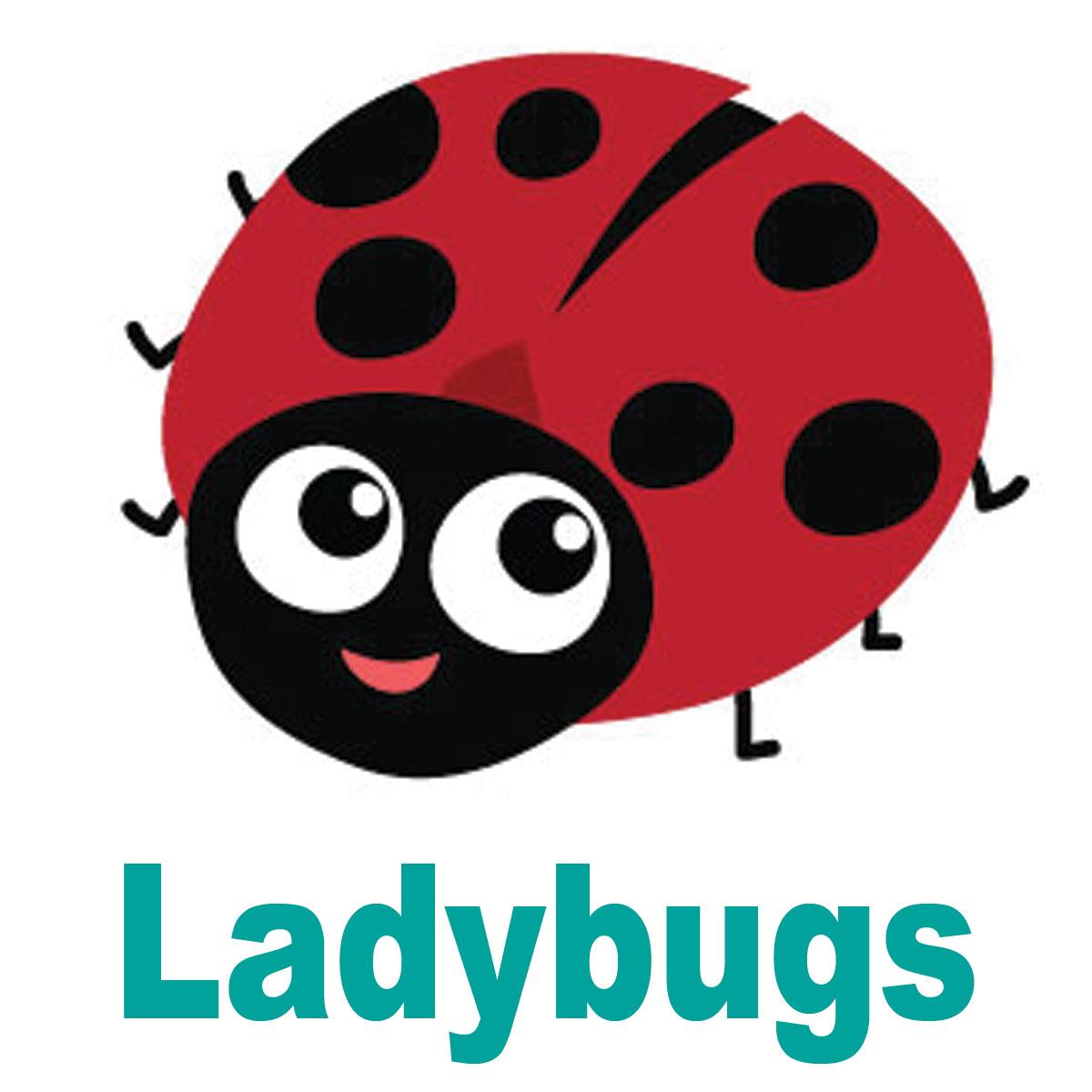 JB_Ladybugs.jpg