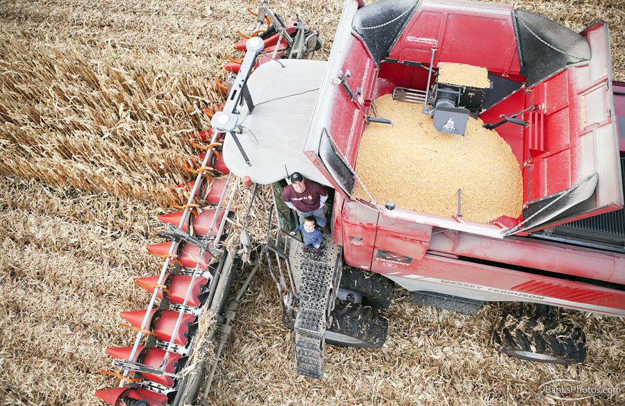 IMG_9346-SS-Combine-Harvest-Farmer.jpg