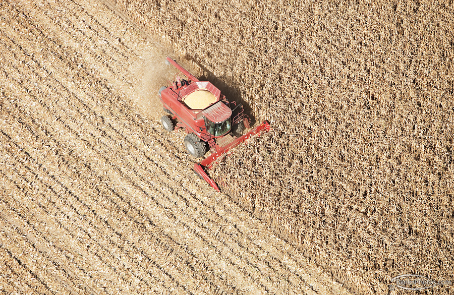 IMG_4710_SS-Case-Combine-Harvesting-Corn-Aerial_Lg.jpg