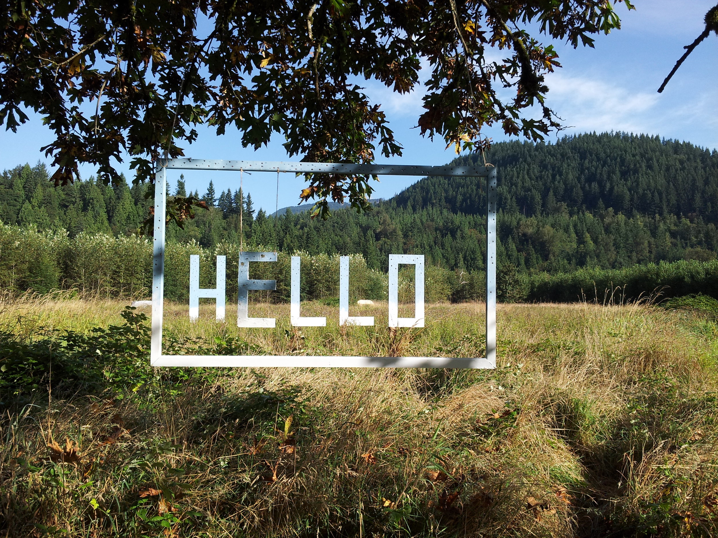 hello field with frame.jpg