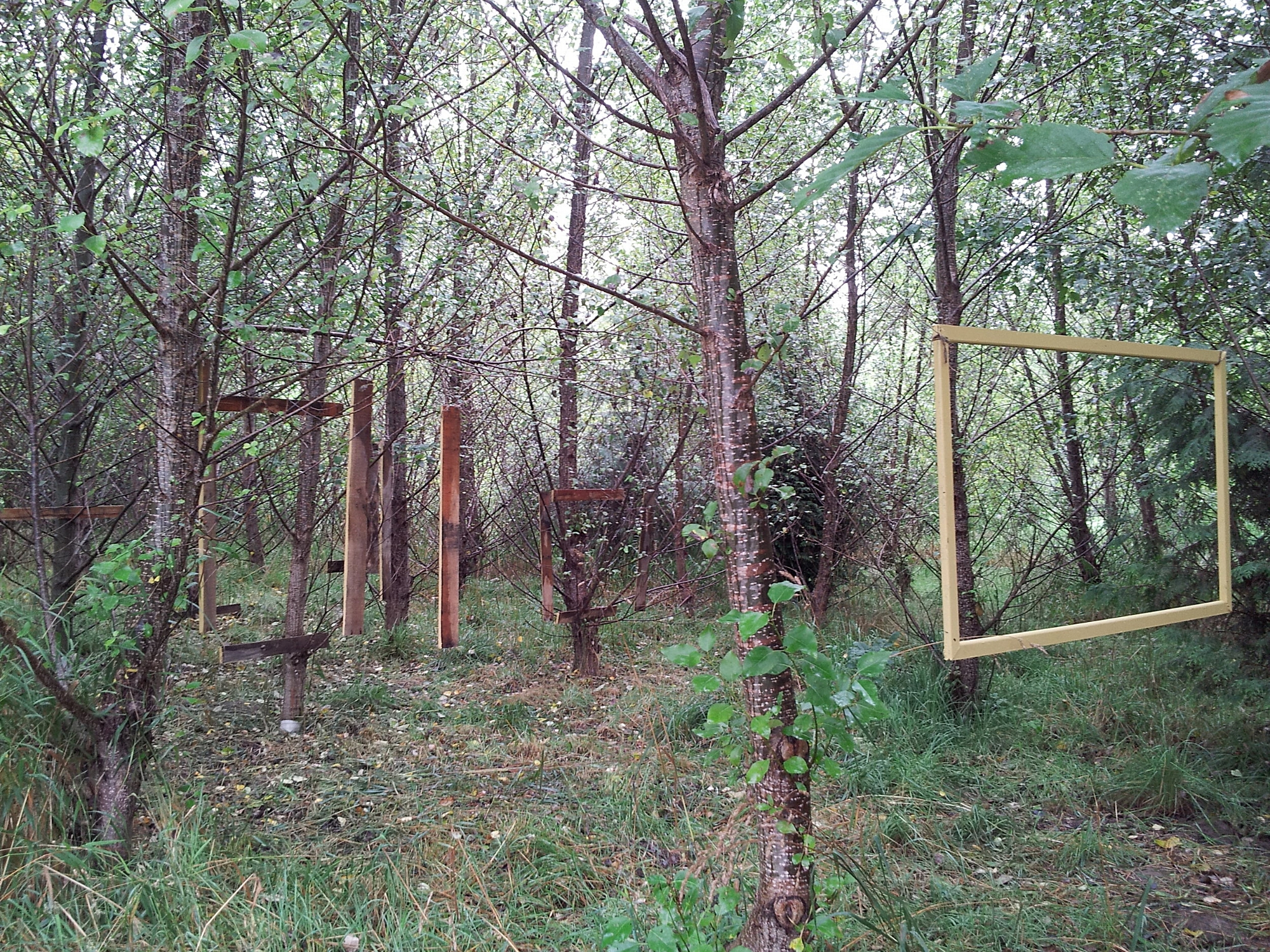hello woods side with frame.jpg