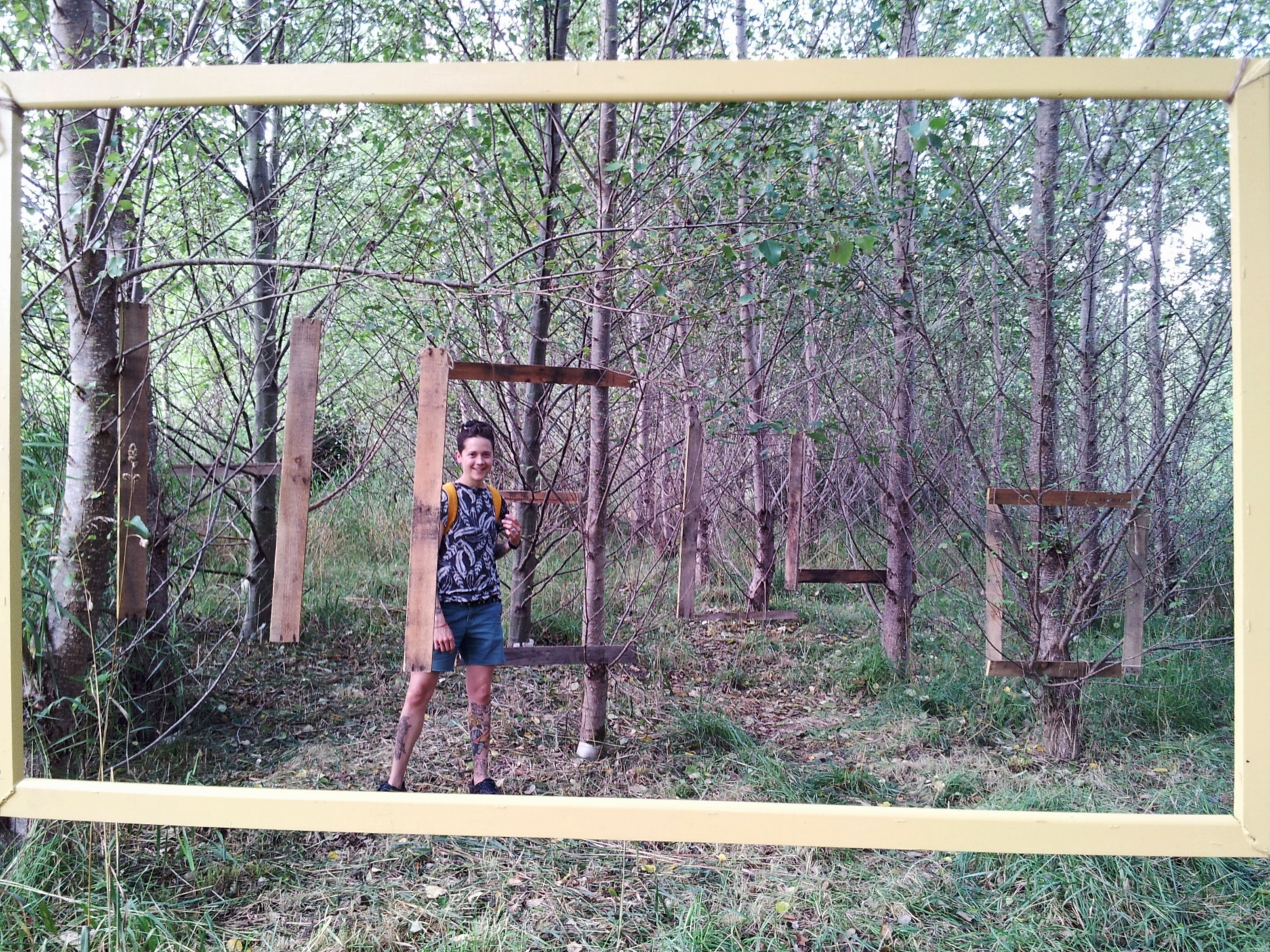 hello woods with ilvs woods.jpg