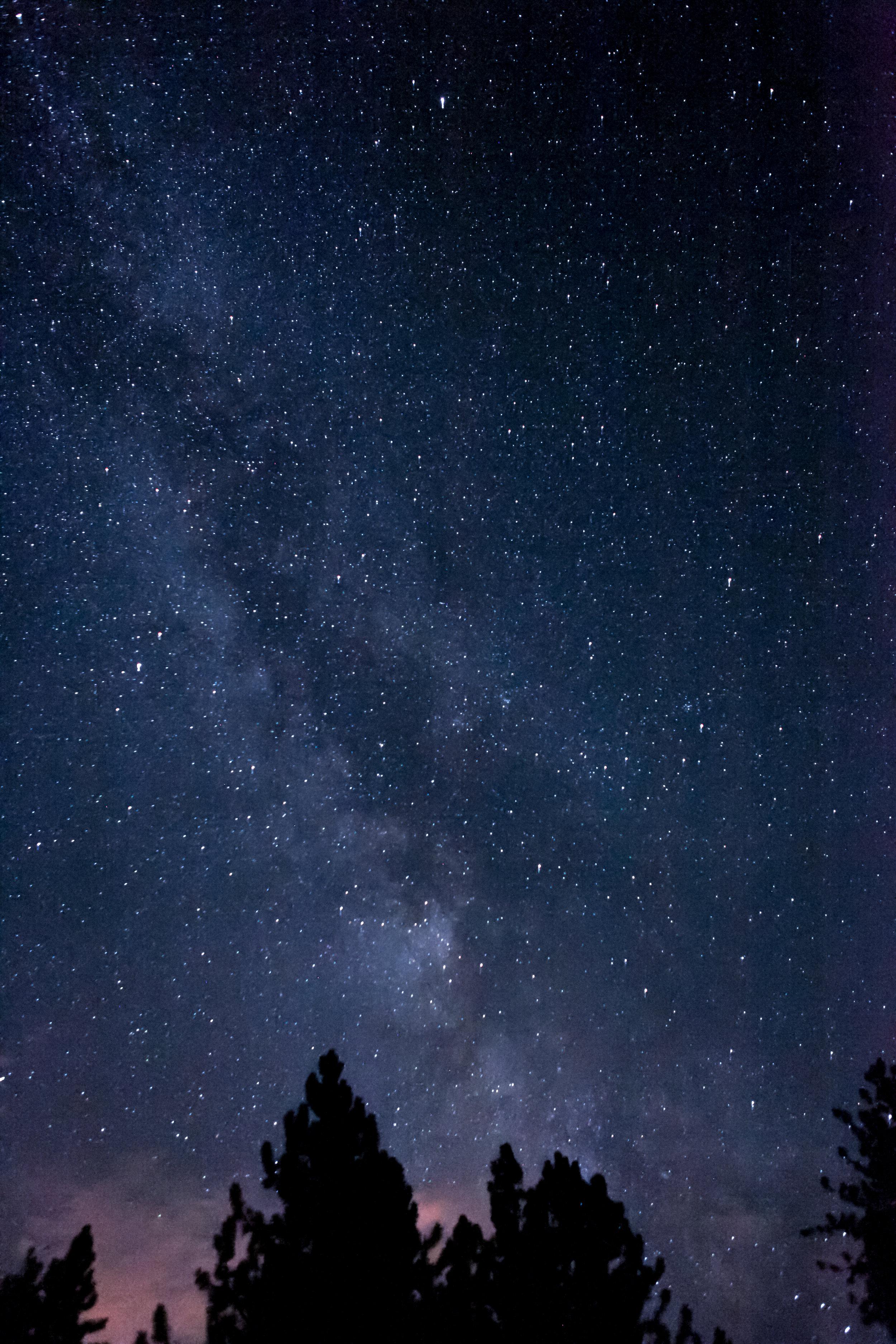 SPACES_2017-8.jpg