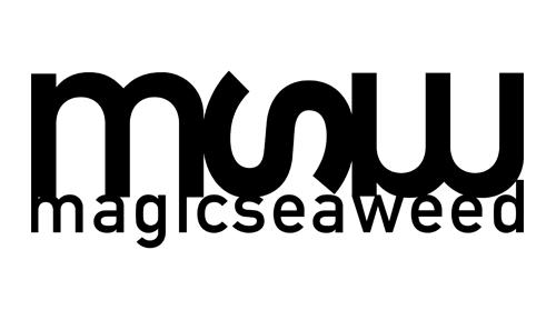Magic Seaweed-Logo.png