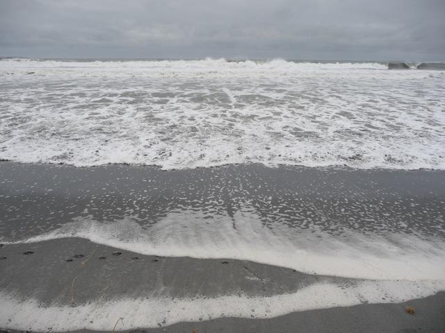 BeachMeadows2.jpg