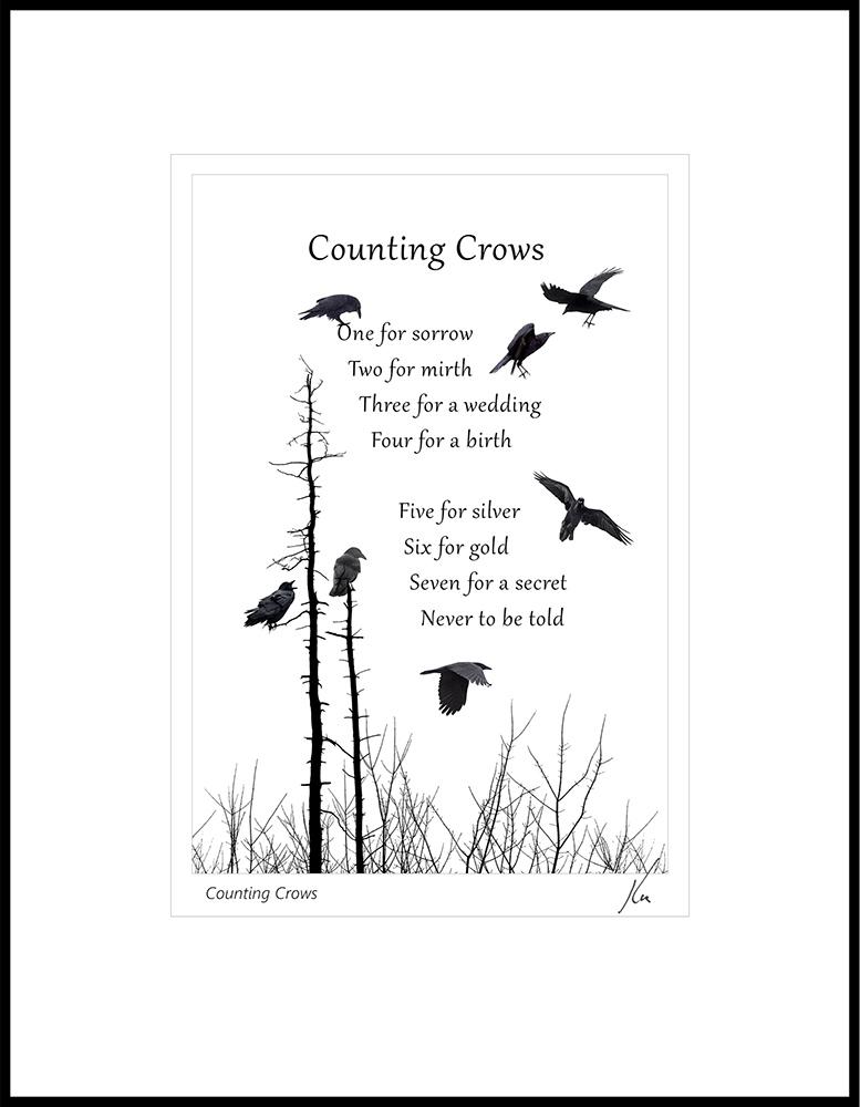 Kas Stone - Counting Crows (KBG08822).jpg
