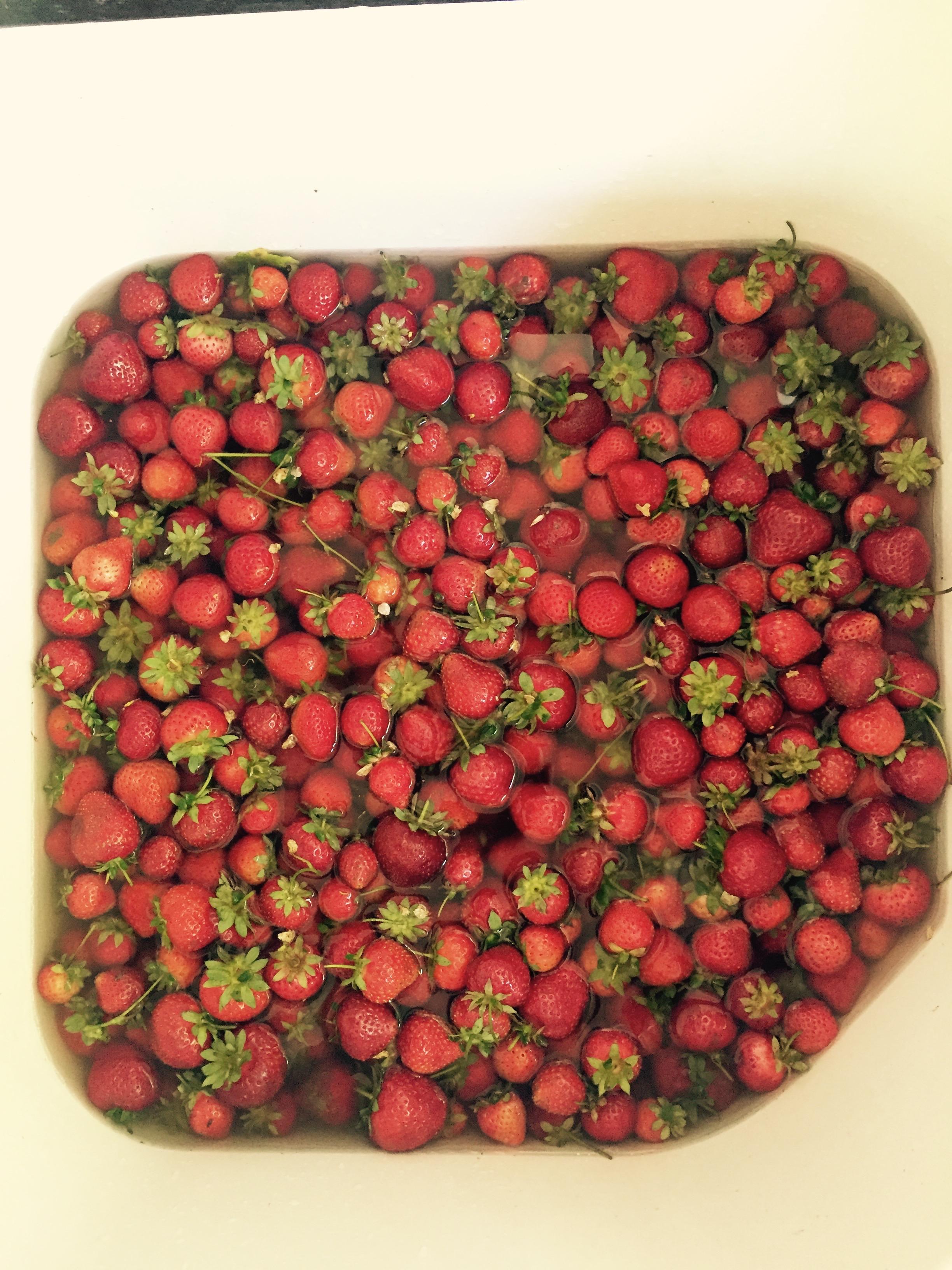 Noci Strawberries