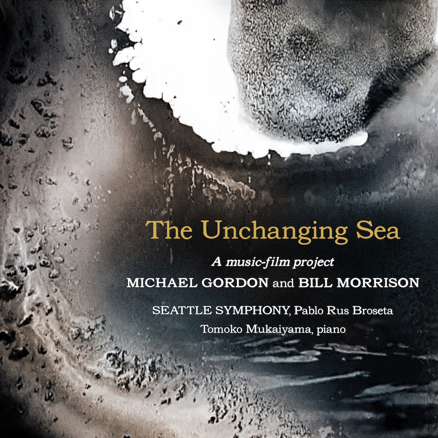Michael Gordon & Bill Morrison –  The Unchanging Sea