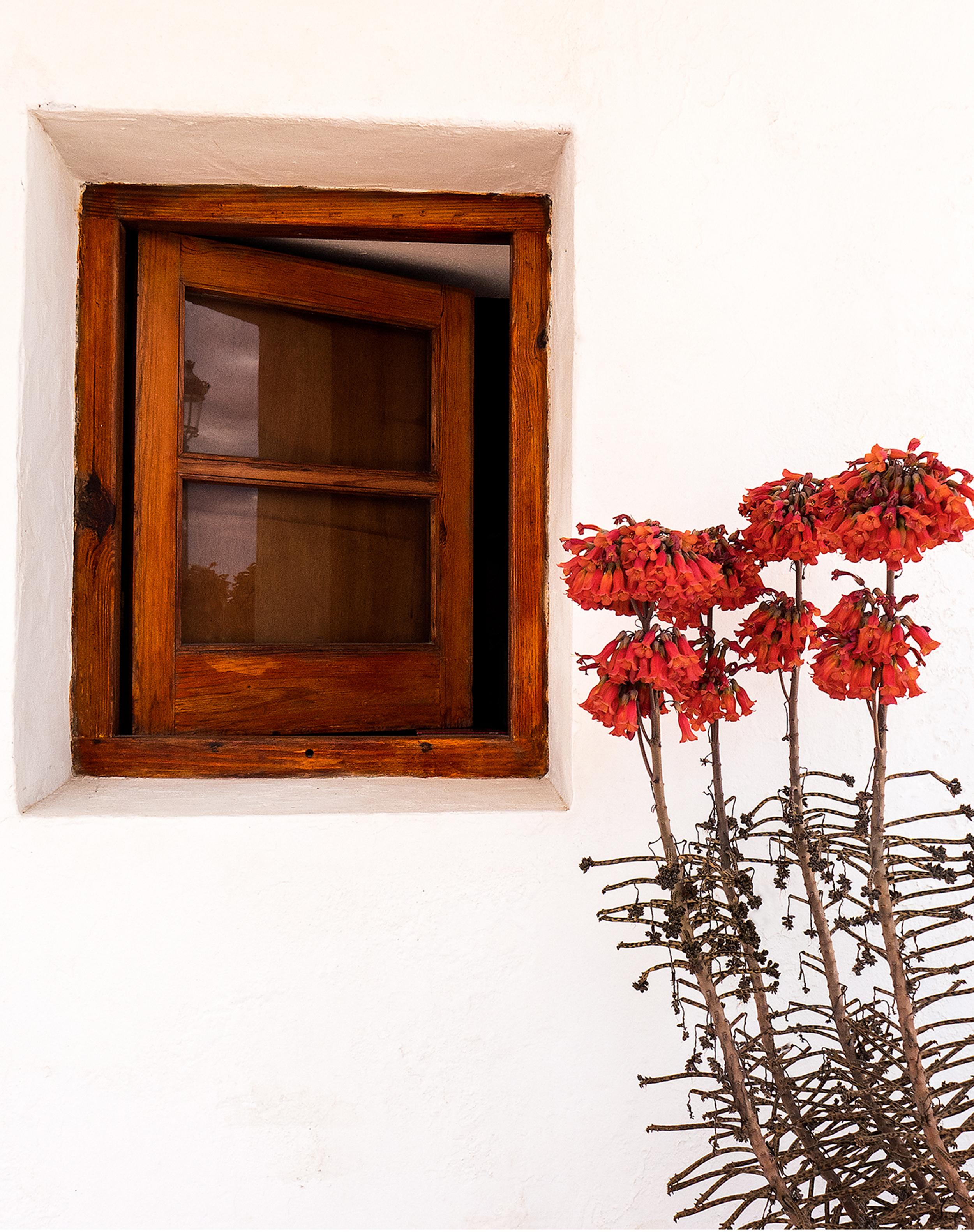 window_8x10 epsm (2).jpg