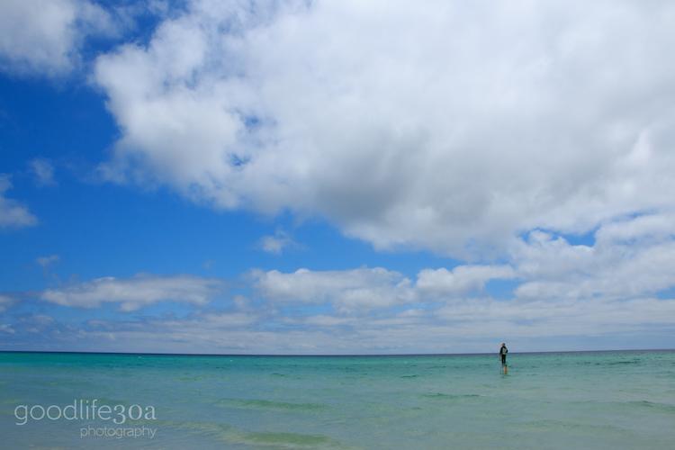 beachscapes - tom fishing.jpg