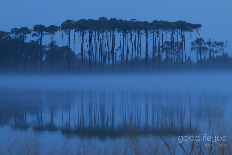 coastal dune lakes - fog at western lake.jpg