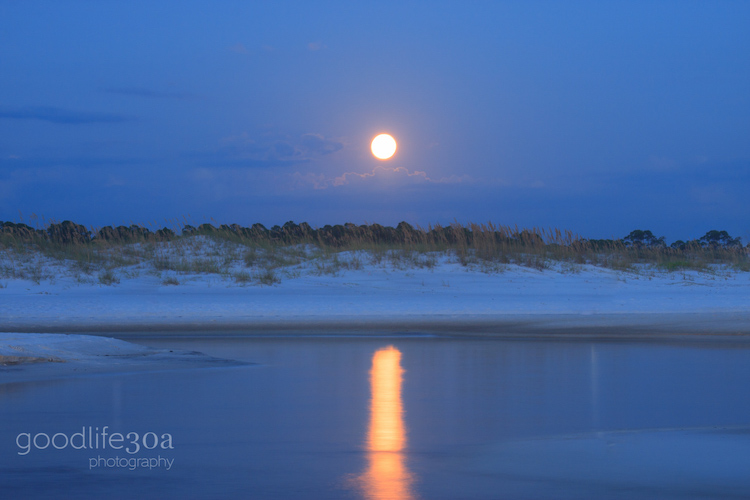 moonrise - moon rise deer lake_.jpg
