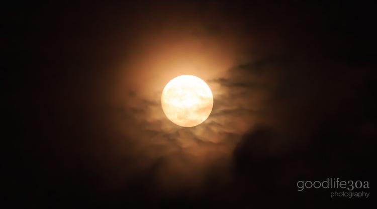 moonrise - spooky moon.jpg