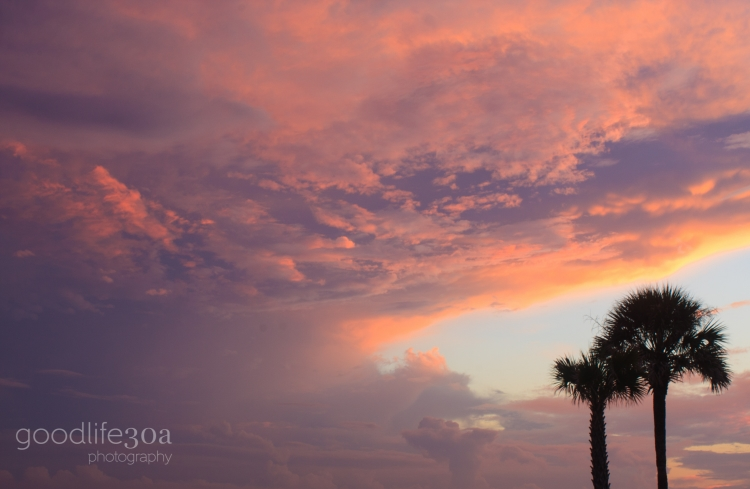 sunsets - palm trees giant marble.jpg