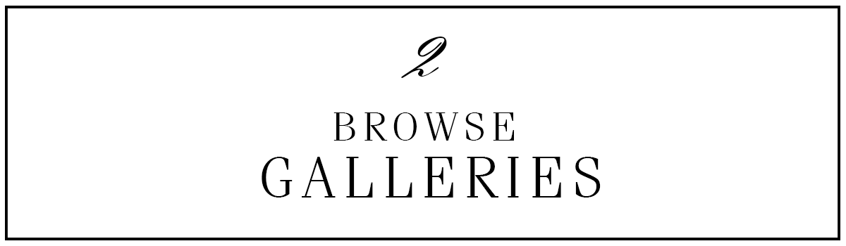 browse the galleries.png
