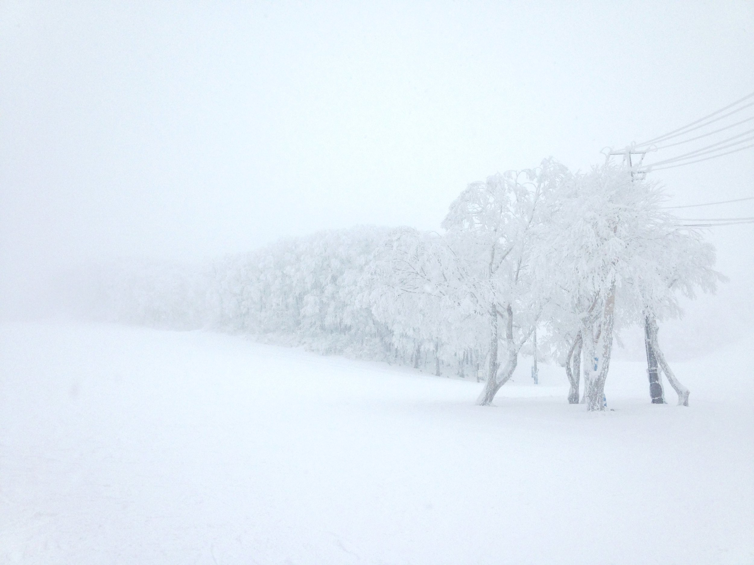 """One of those days when all color is drained from nature, at my """"home"""" ski-場, Zao Onsen, Yamagata."""
