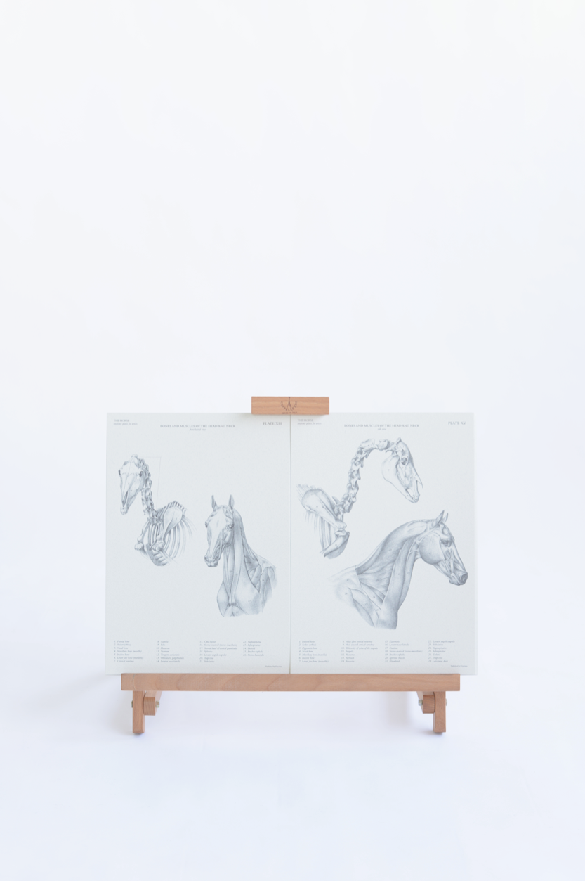 Easels from Cappelletto
