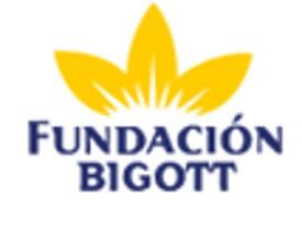 FundacionBigott.jpg