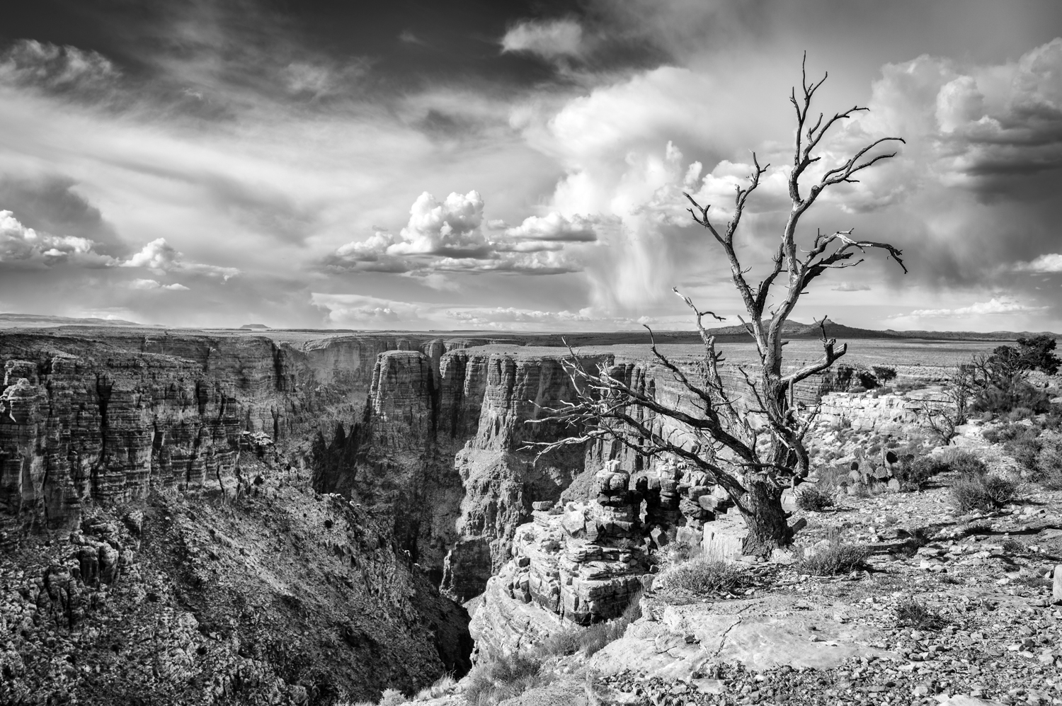 And then the earth cracked open …. Arizona