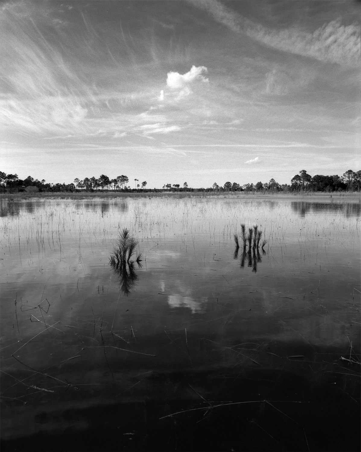 Mamiya RZ67 Pro II with 50mm f/4.5 ULD, #25 red filter and circular polarizer