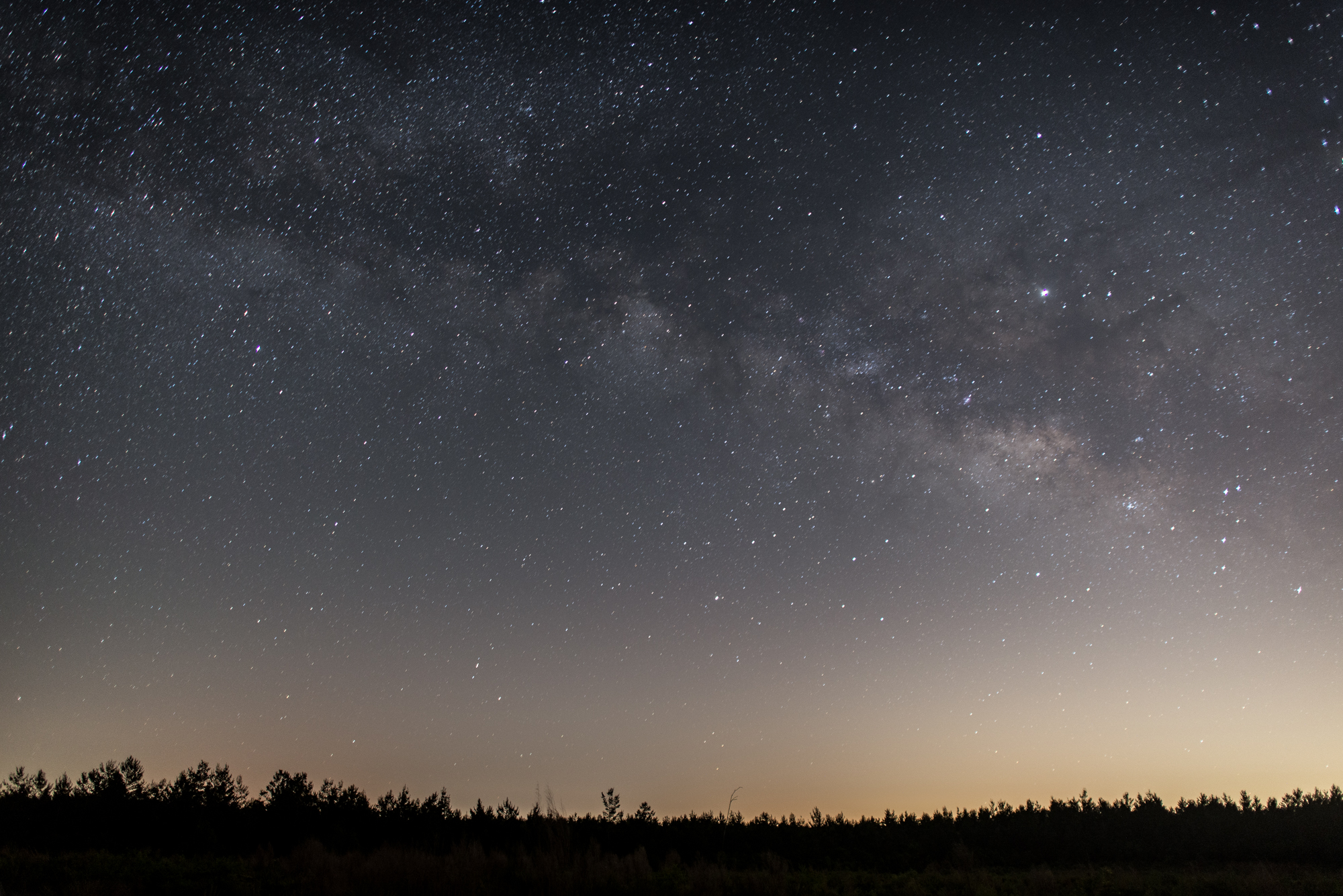 The Milky Way rises above the Juniper Prairie Wilderness in the Ocala National Forest. Shot details: Nikon D610, 24mm f/1.4