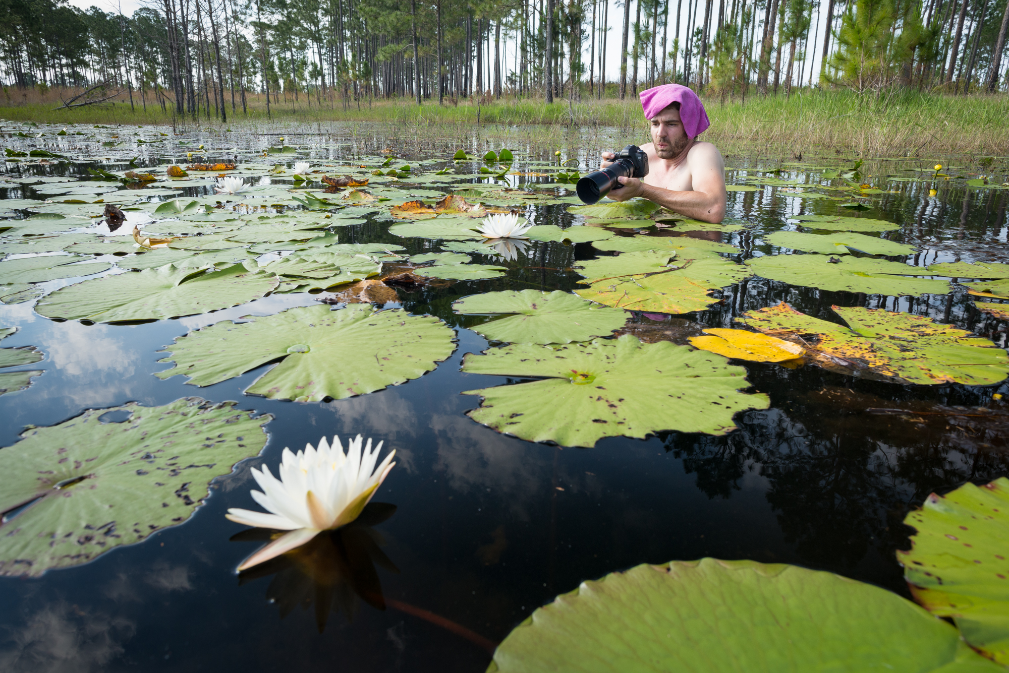 Alex wades into the swamp to capture macro images of the water lilies.