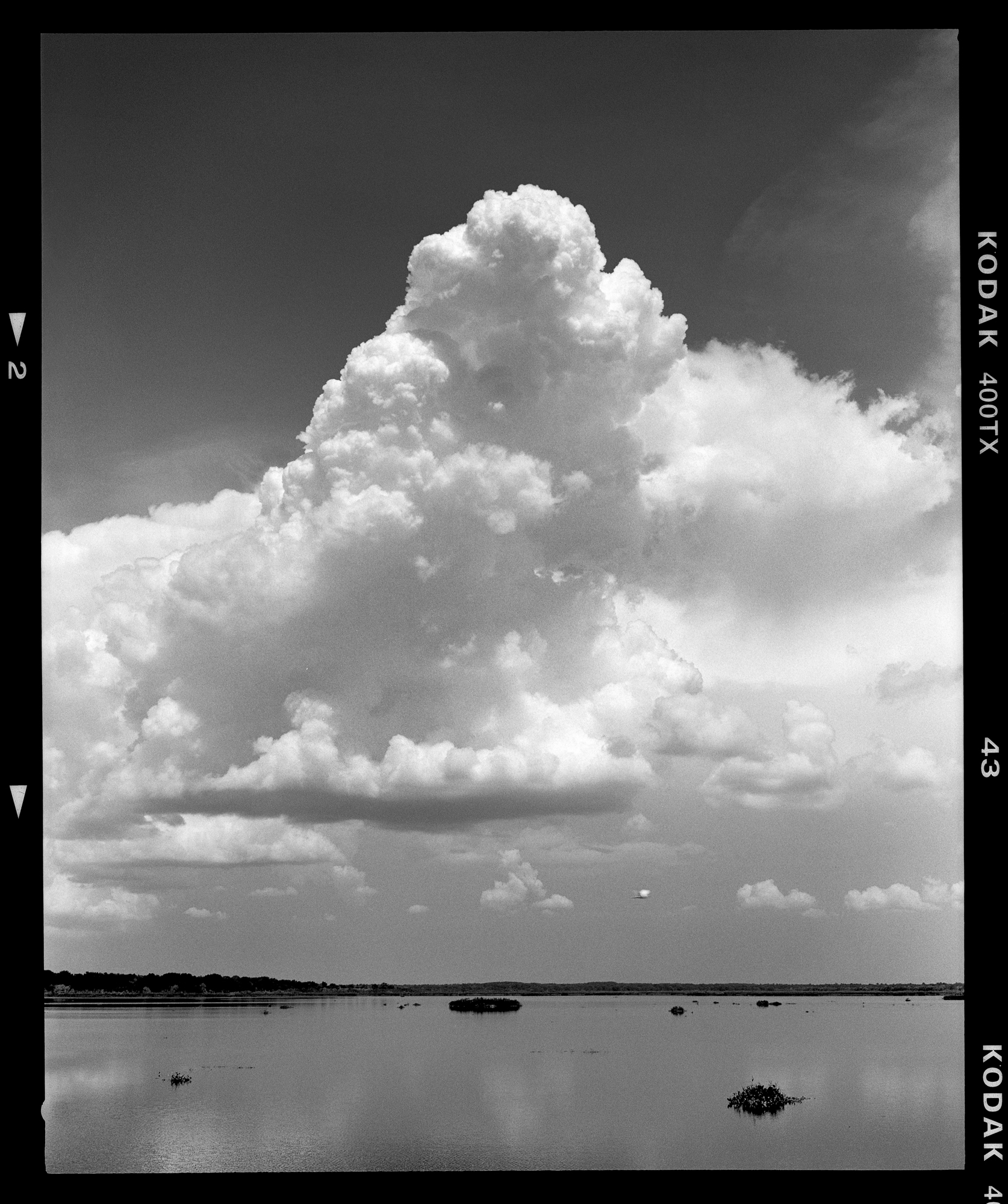 A large storm forms over Paynes Prairie Preserve State Park. Shot with the Mamiya 7ii.