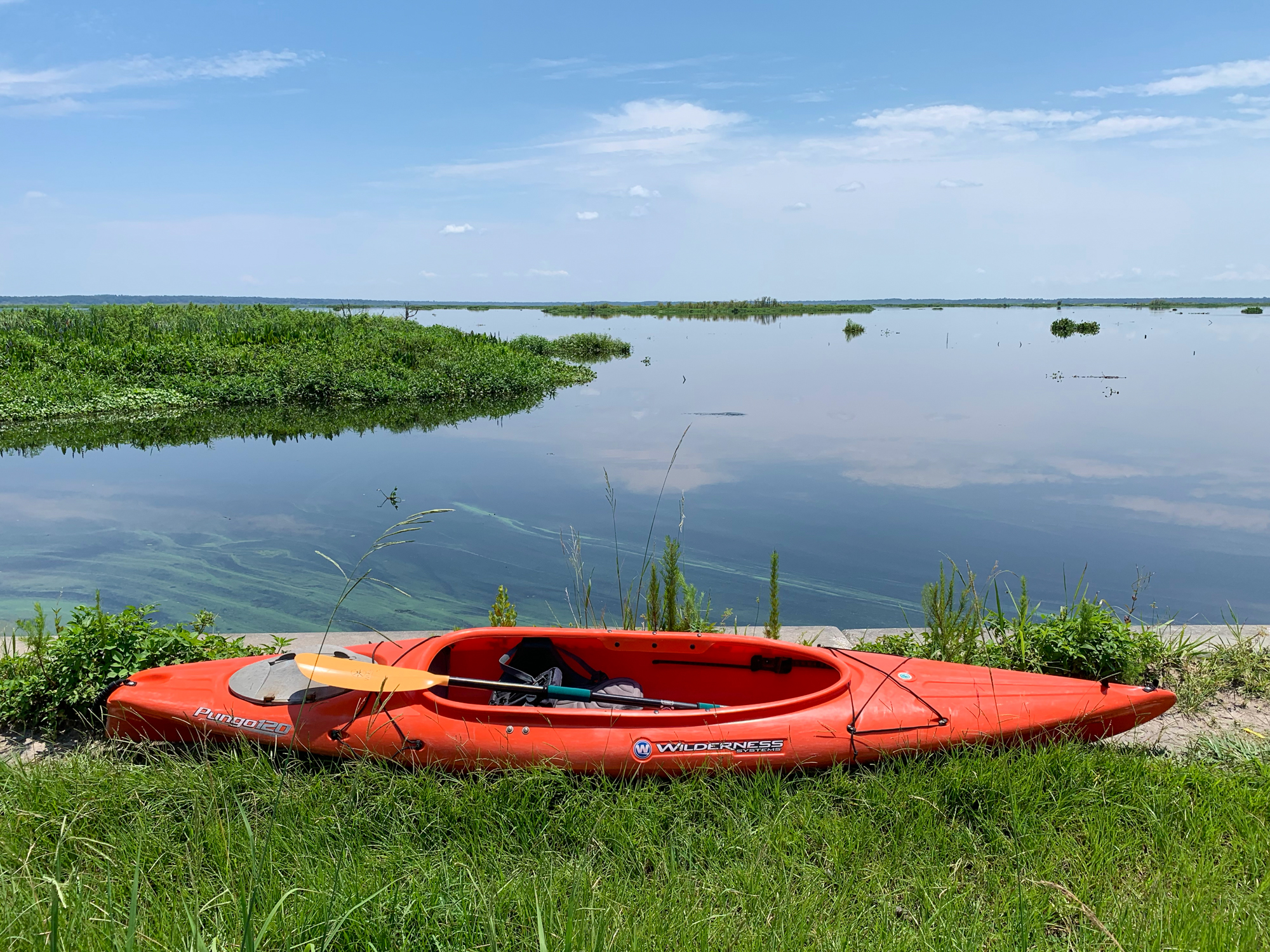 My kayak sits on the edge of Paynes Prairie Preserve prior to launching from US 441.