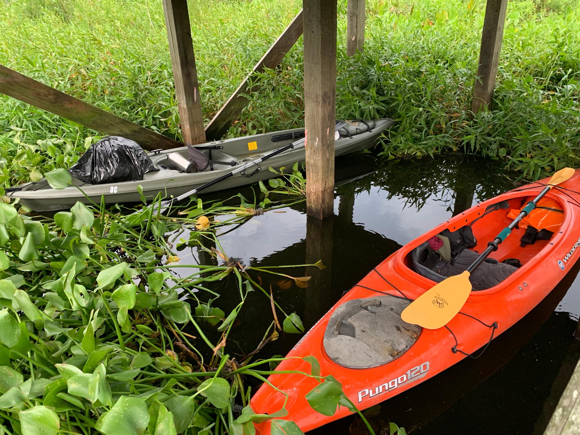 Our kayaks enclosed beneath the La Chua Trail observation platform.