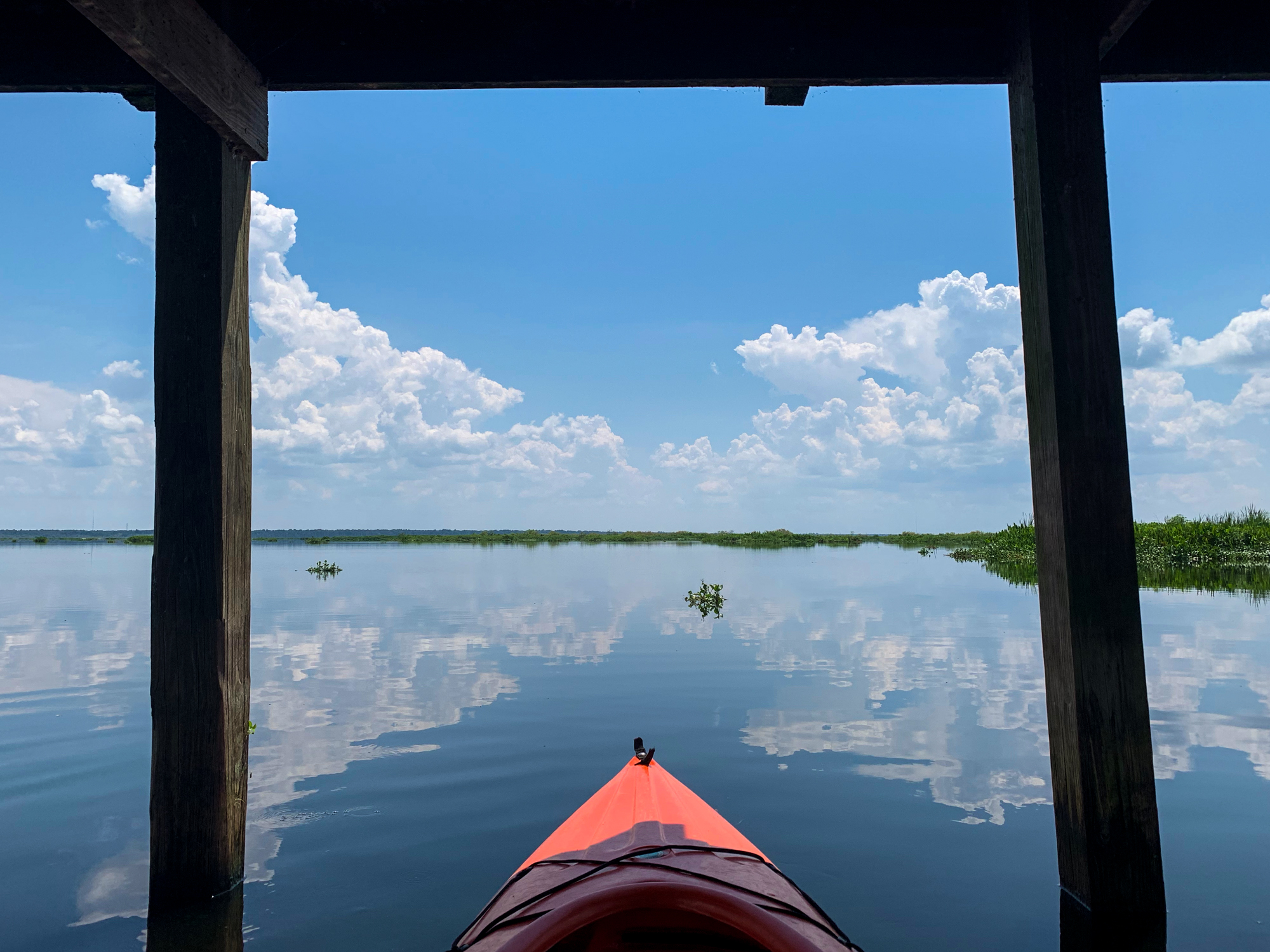 A first person view of my kayak parked under the La Chua Trail overlook. It was like having a personal two-kayak garage in the middle of the prairie.