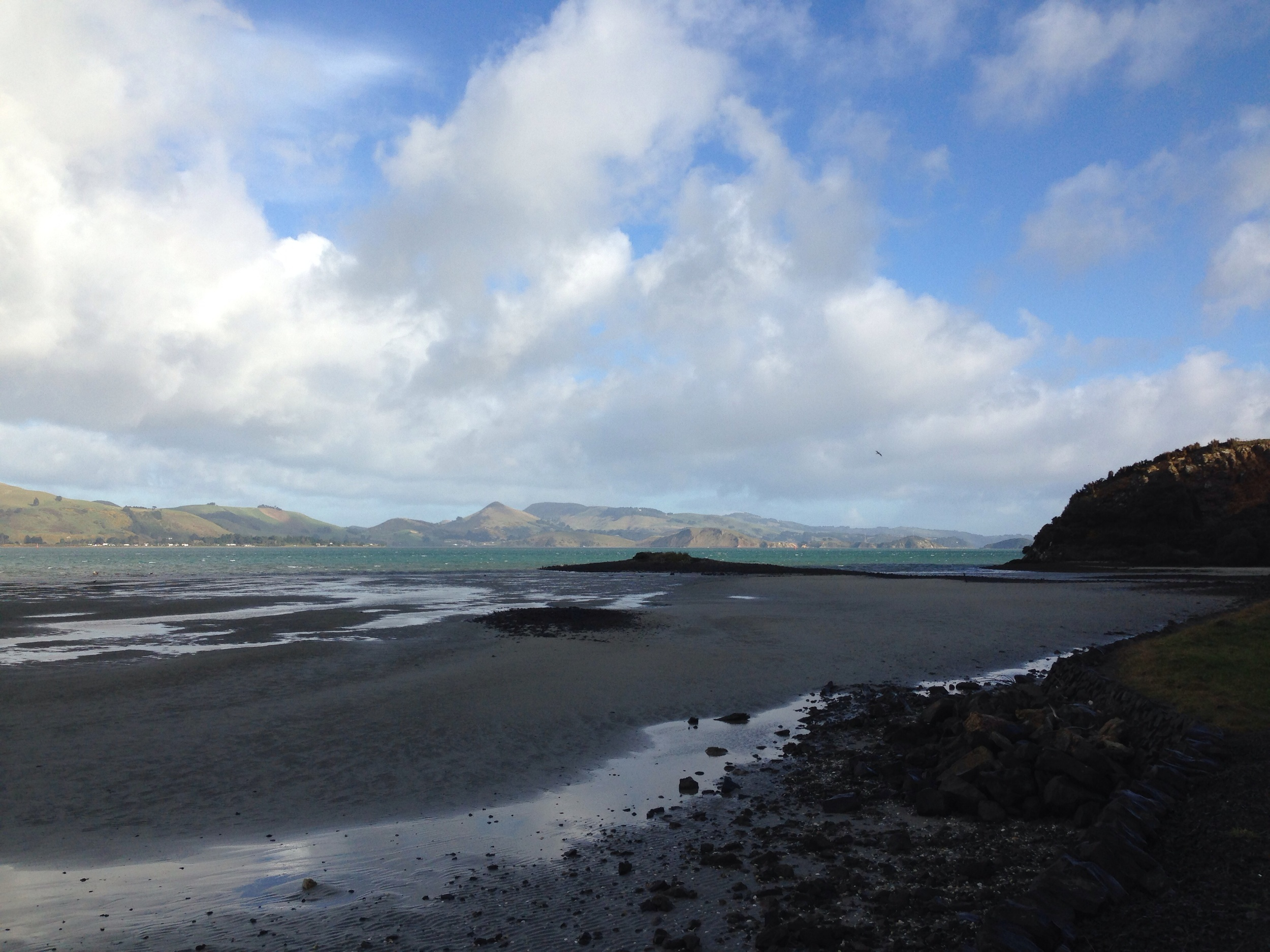 Otago Harbour as seen from Aramoana Road.