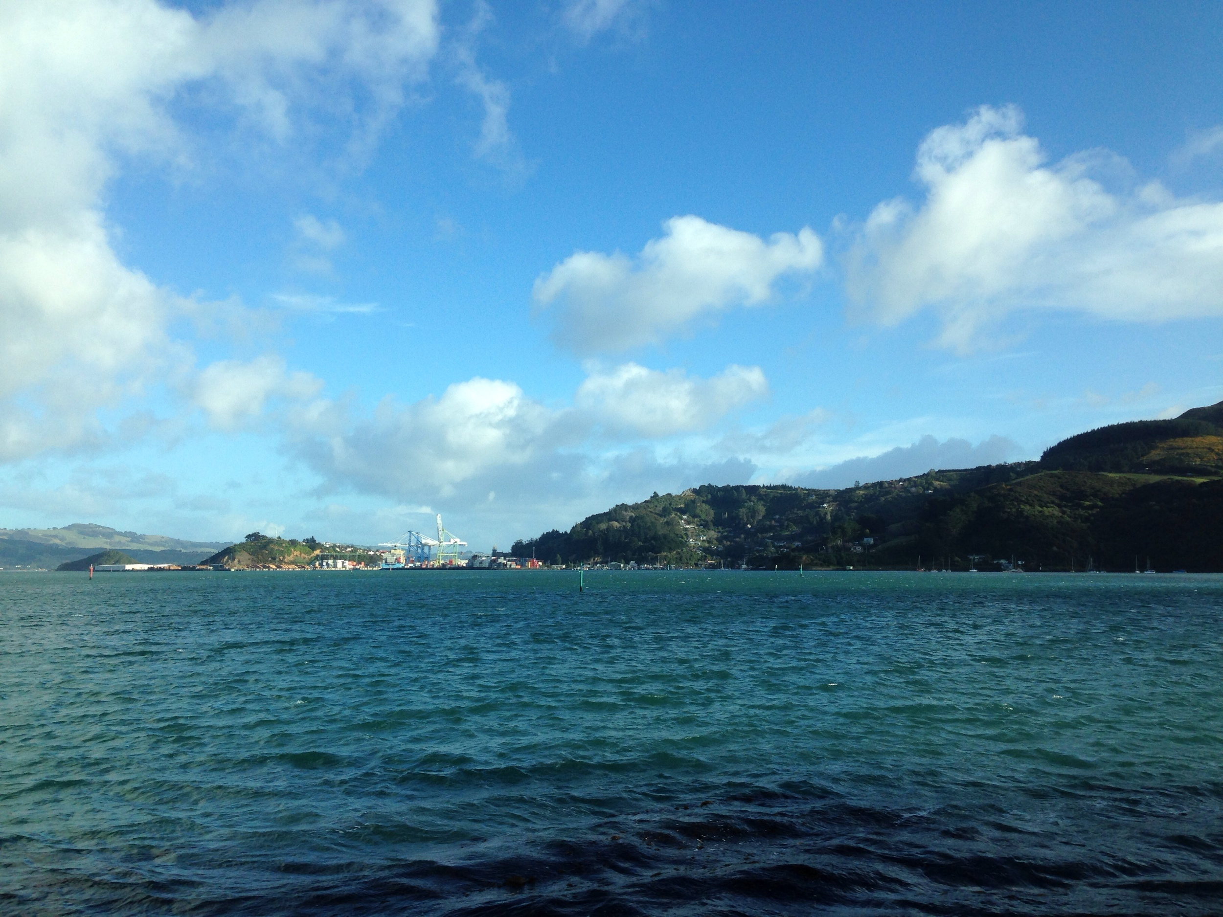 Port Chalmers in the distance.