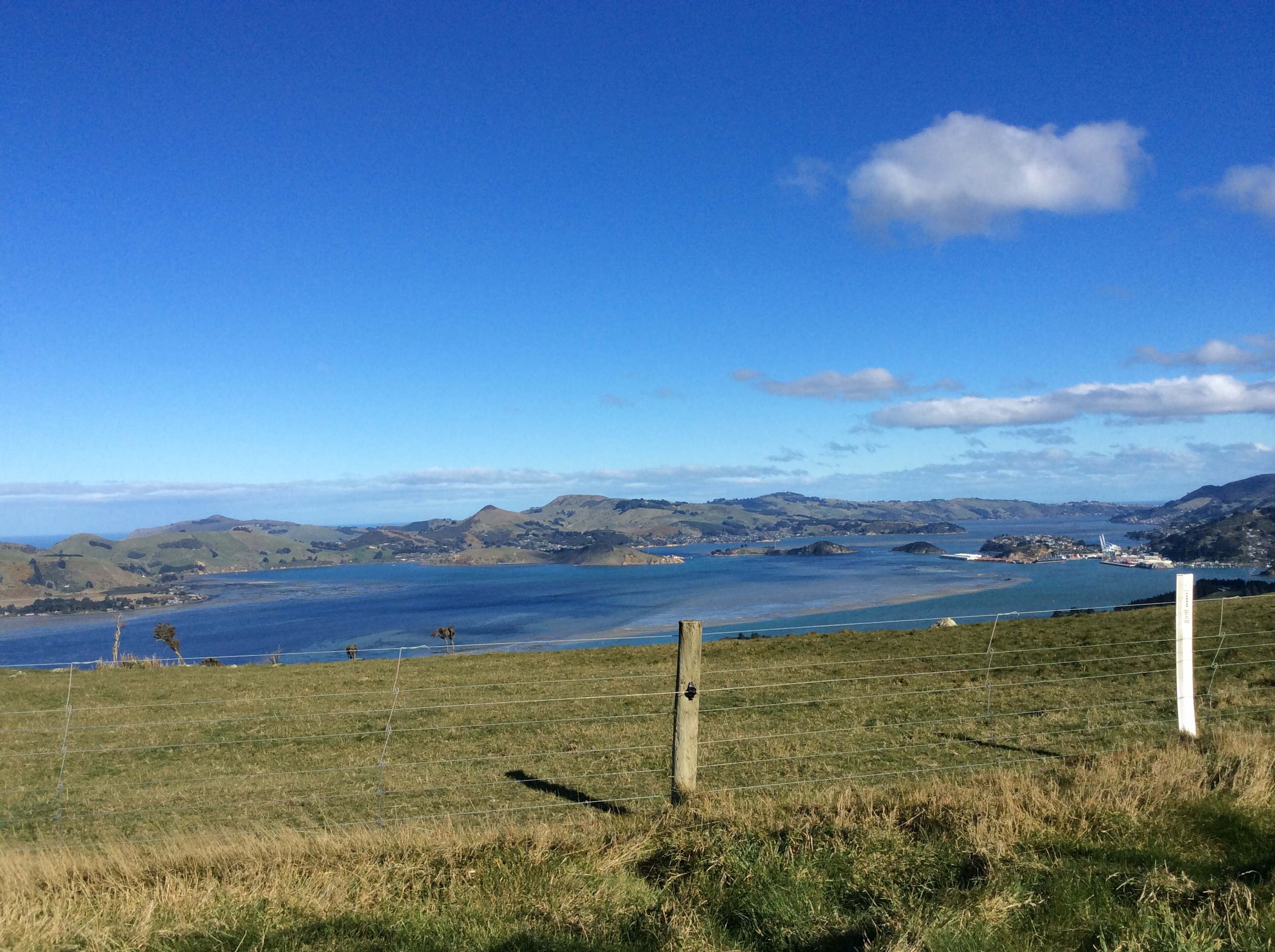 The Otago Harbour with Port Chalmers on the far right, the Otago Peninsula and the Pacific Ocean in the background