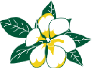 savannah magnolia.png