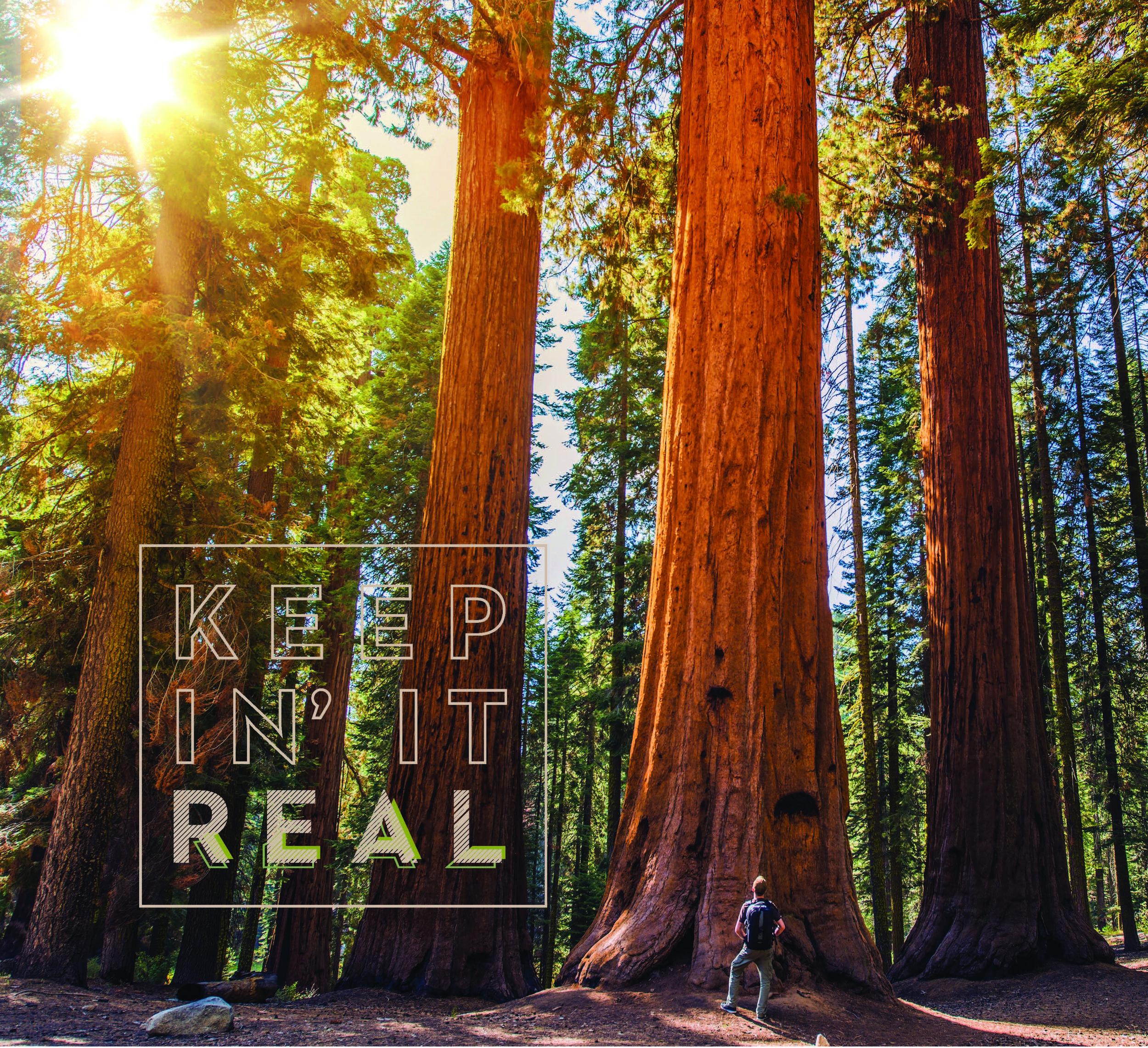 KeepinItReal_Woods.jpg