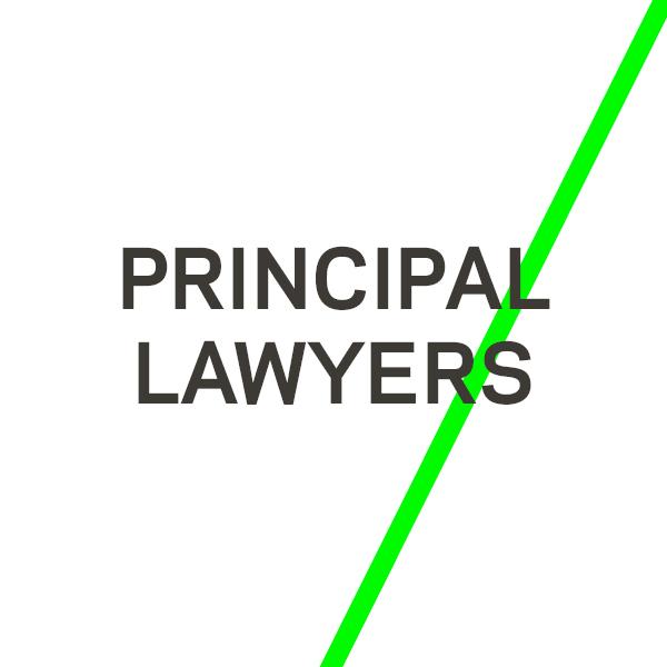 Principal lawyers white.jpg
