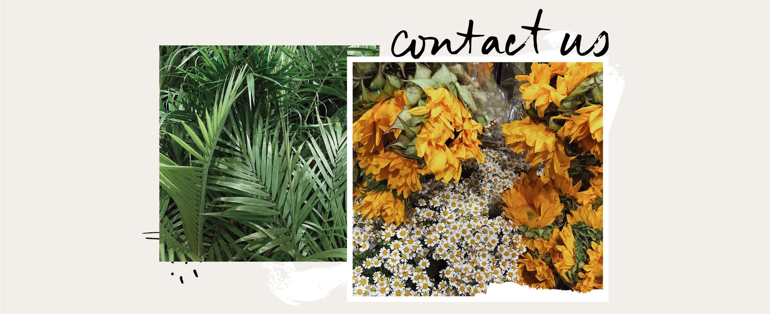 contactform2.jpg