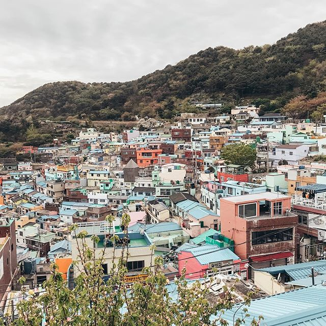 Colorful lil village in Busan. Can't wait to go back! (... but when? 😂) . . . . . . . . #houses #openmyworld #travel #inspiration #thatsdarling #fashionblogger #instadaily #lifestyle #darling #여행 #추억 #momentslikethese #korea #busan #일상스타그램 #iwashere #memories #thehappynow #일상 #데일리 #마을 #colorful #village #town #throwback