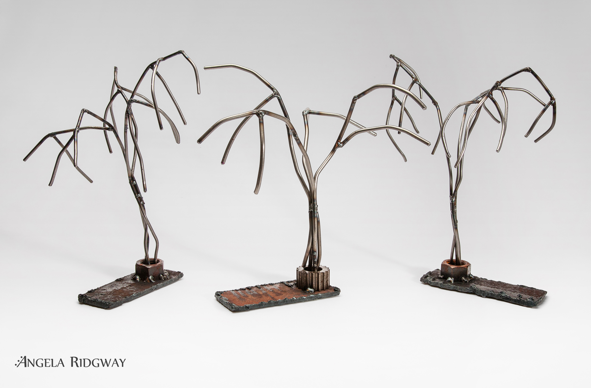 weeping willow 1, 2 & 3