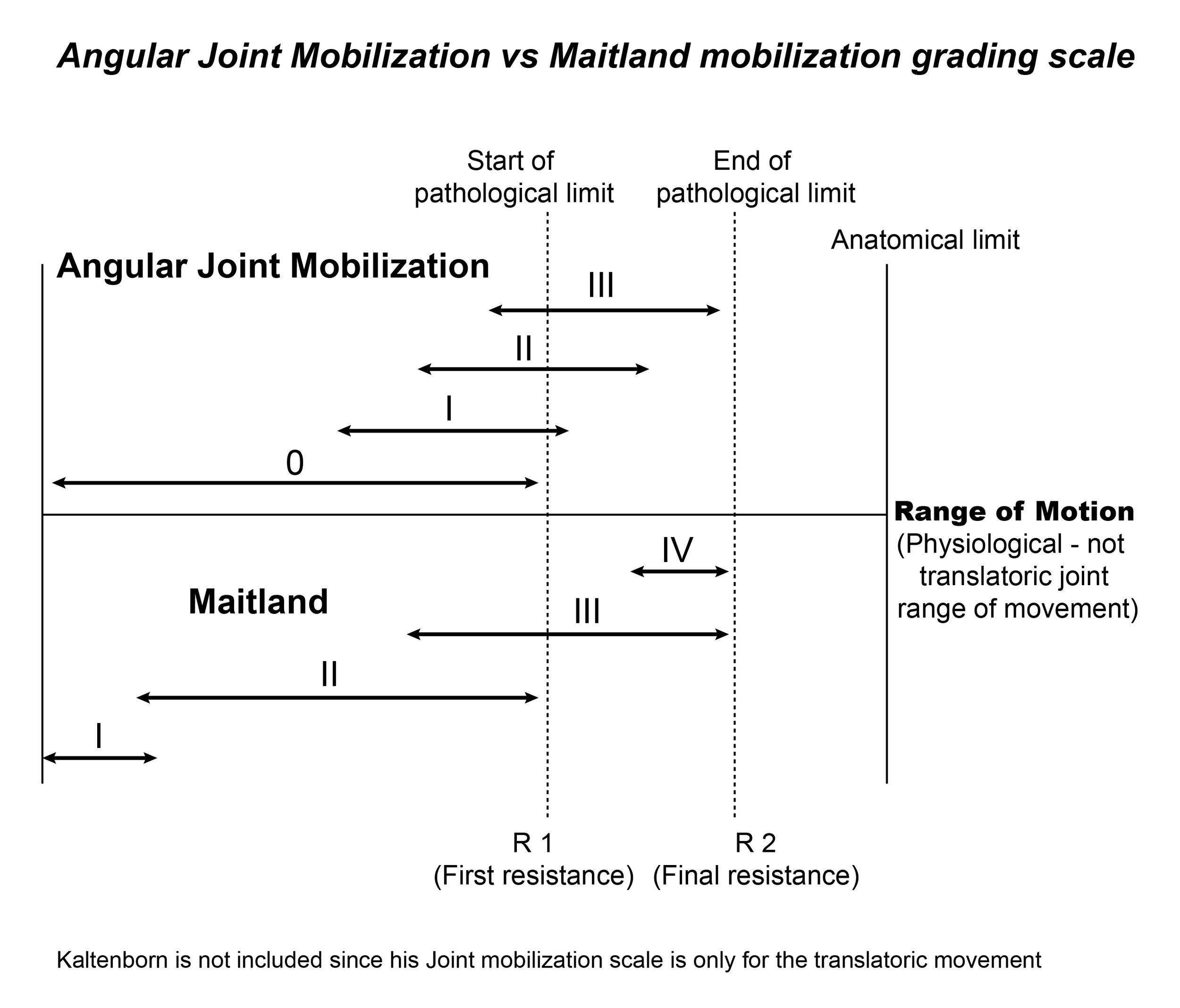 AJM vs Maitland grading scale1.jpg